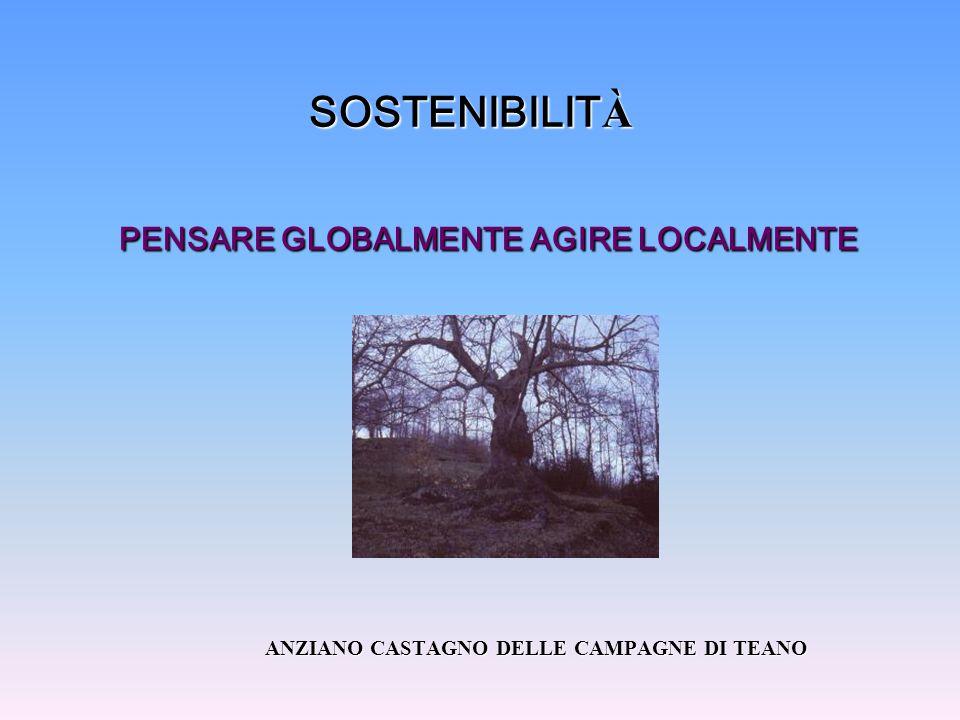SOSTENIBILIT À PENSARE GLOBALMENTE AGIRE LOCALMENTE ANZIANO CASTAGNO DELLE CAMPAGNE DI TEANO