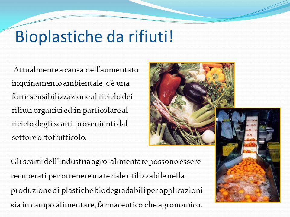 Bioplastiche da rifiuti! Attualmente a causa dell'aumentato inquinamento ambientale, c'è una forte sensibilizzazione al riciclo dei rifiuti organici e