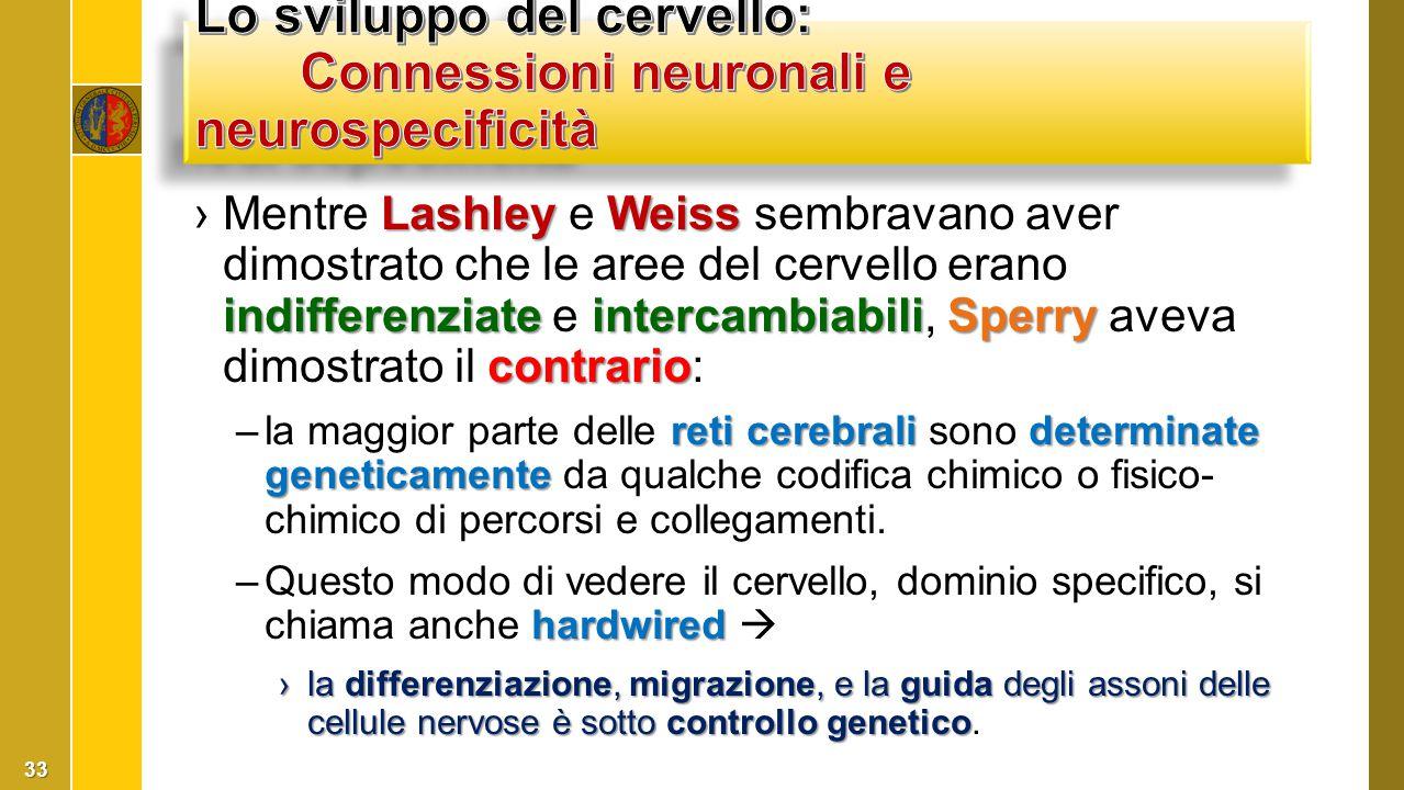 Lashley Weiss indifferenziateintercambiabiliSperry contrario ›Mentre Lashley e Weiss sembravano aver dimostrato che le aree del cervello erano indiffe