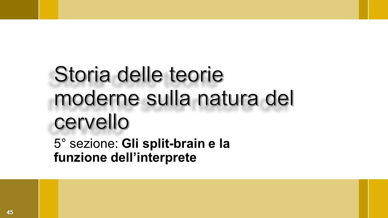 45 5° sezione: Gli split-brain e la funzione dell'interprete