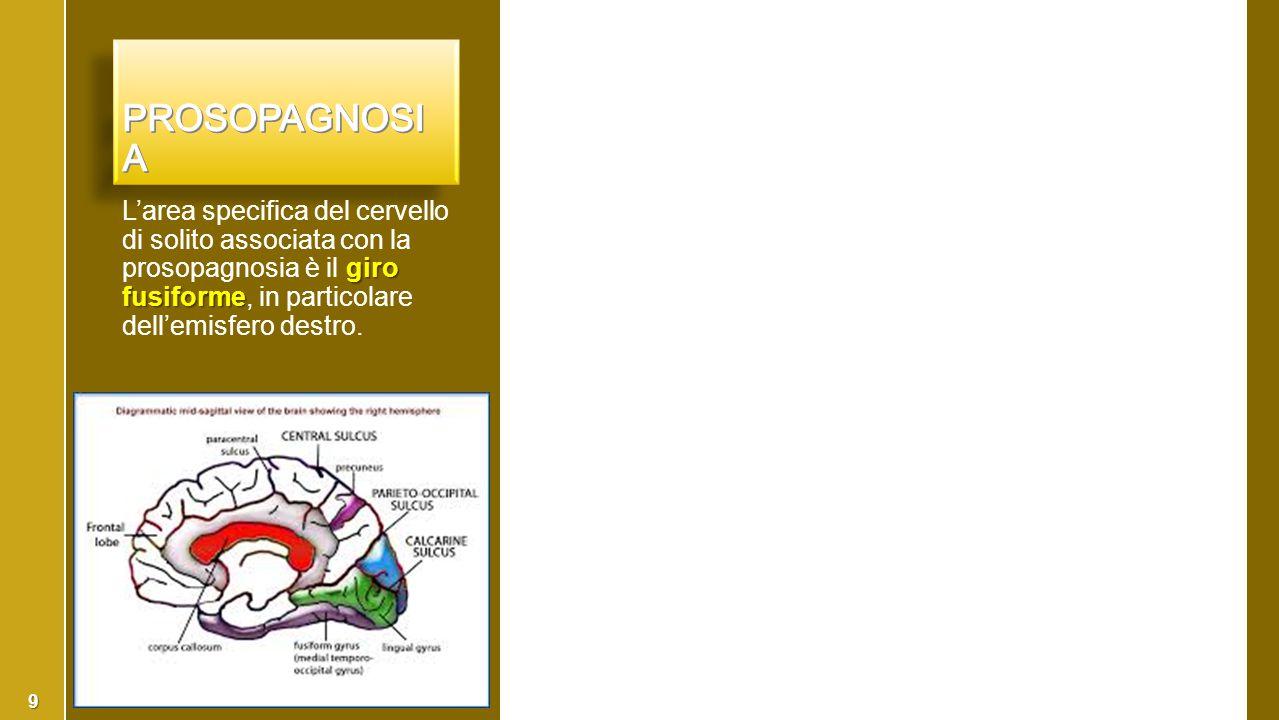 giro fusiforme L'area specifica del cervello di solito associata con la prosopagnosia è il giro fusiforme, in particolare dell'emisfero destro. 9