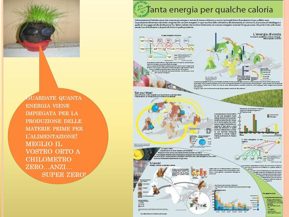 G UARDATE QUANTA ENERGIA VIENE IMPIEGATA PER LA PRODUZIONE DELLE MATERIE PRIME PER L ' ALIMENTAZIONE .