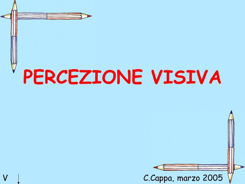 PERCEZIONE VISIVA VC.Cappa, marzo 2005