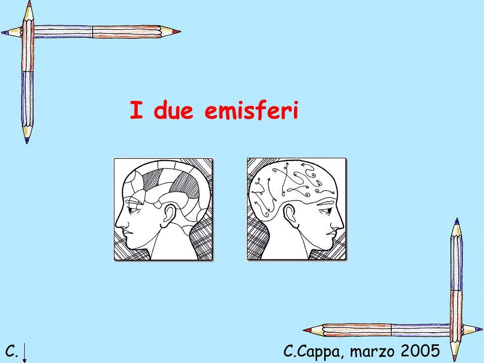I due emisferi C.C.Cappa, marzo 2005