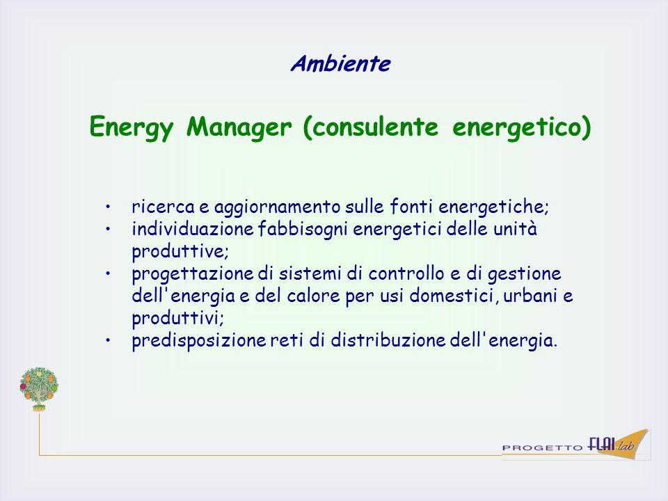 Ambiente ricerca e aggiornamento sulle fonti energetiche; individuazione fabbisogni energetici delle unità produttive; progettazione di sistemi di con