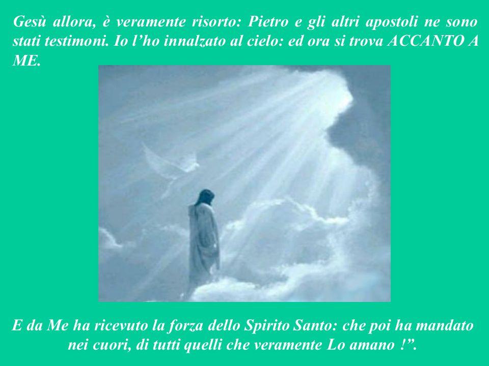 Gesù allora, è veramente risorto: Pietro e gli altri apostoli ne sono stati testimoni.