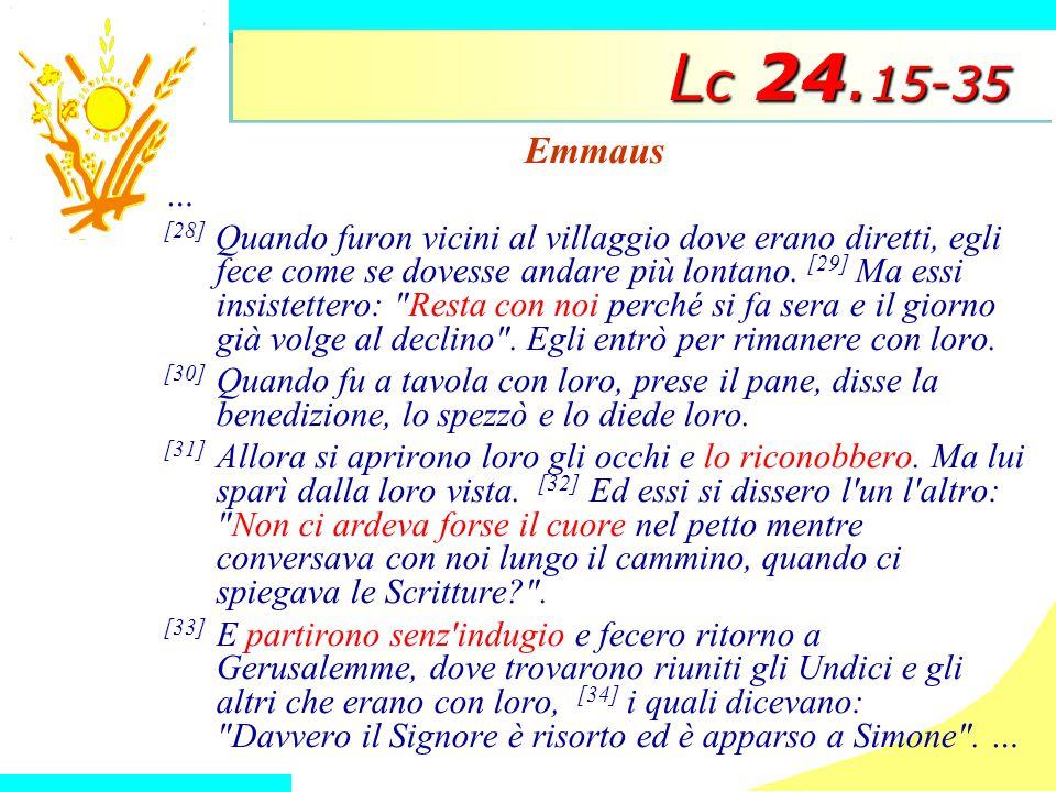 L c 24.
