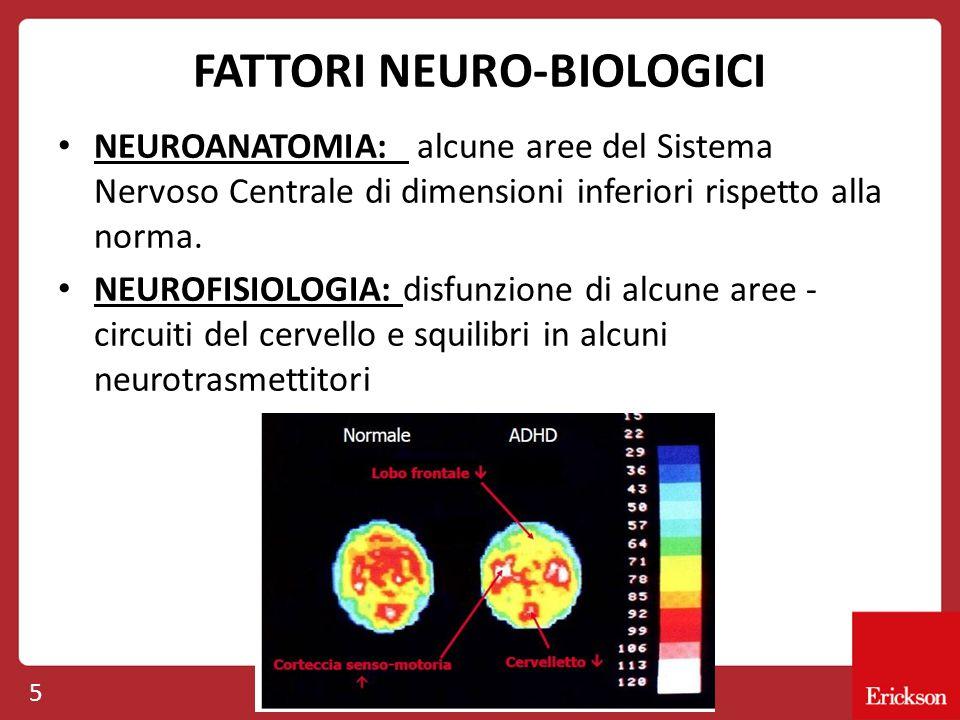 FATTORI NEURO-BIOLOGICI NEUROANATOMIA: alcune aree del Sistema Nervoso Centrale di dimensioni inferiori rispetto alla norma. NEUROFISIOLOGIA: disfunzi