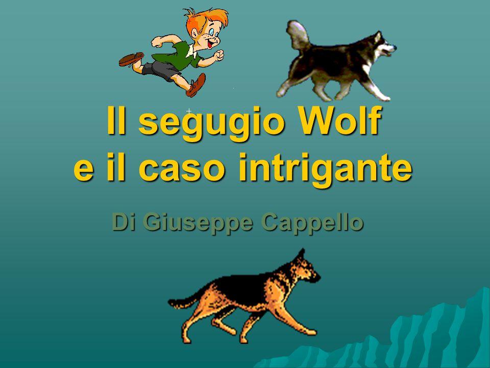Il segugio Wolf e il caso intrigante Di Giuseppe Cappello
