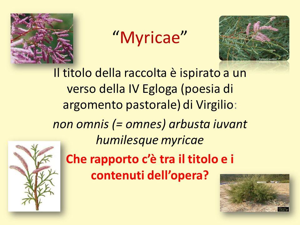 """""""Myricae"""" Il titolo della raccolta è ispirato a un verso della IV Egloga (poesia di argomento pastorale) di Virgilio: non omnis (= omnes) arbusta iuva"""
