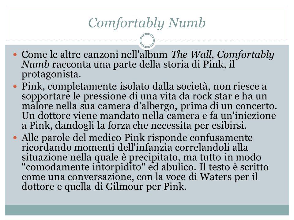Comfortably Numb Come le altre canzoni nell album The Wall, Comfortably Numb racconta una parte della storia di Pink, il protagonista.