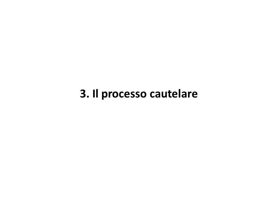 3. Il processo cautelare