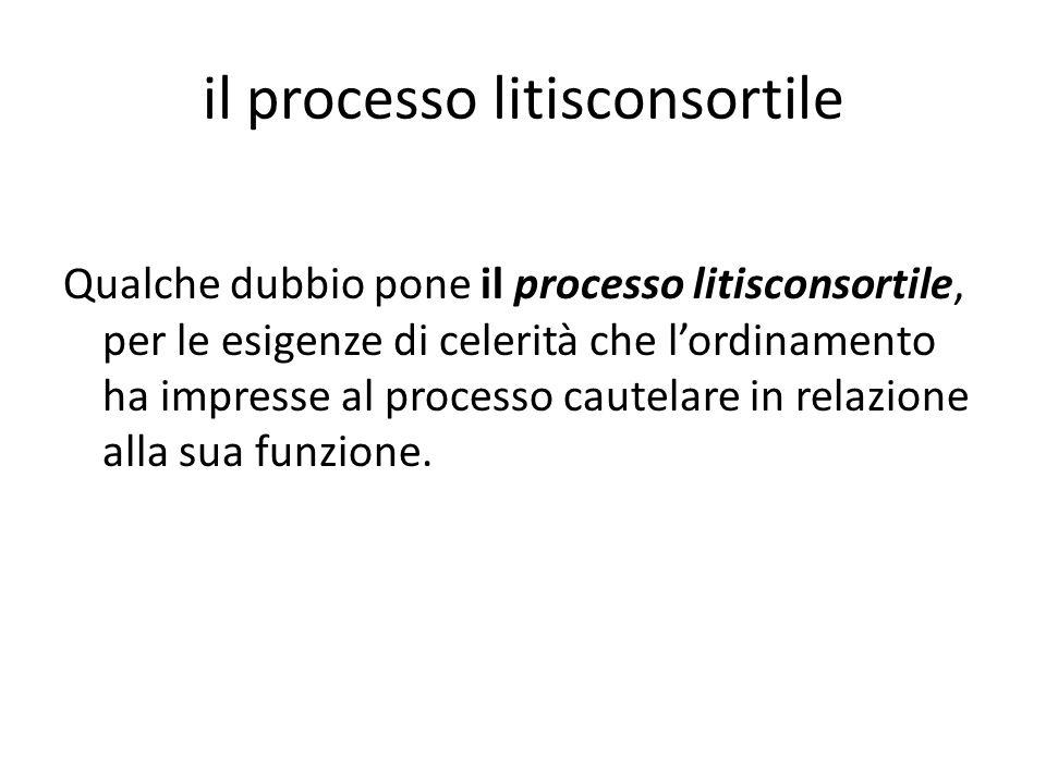 il processo litisconsortile Qualche dubbio pone il processo litisconsortile, per le esigenze di celerità che l'ordinamento ha impresse al processo cau