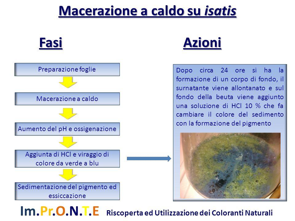 Im.Pr.O.N.T.E Riscoperta ed Utilizzazione dei Coloranti Naturali Dopo circa 24 ore si ha la formazione di un corpo di fondo, il surnatante viene allontanato e sul fondo della beuta viene aggiunto una soluzione di HCl 10 % che fa cambiare il colore del sedimento con la formazione del pigmento Preparazione foglie Macerazione a caldo Aumento del pH e ossigenazione Aggiunta di HCl e viraggio di colore da verde a blu Sedimentazione del pigmento ed essiccazione Macerazione a caldo su isatis Azioni Fasi