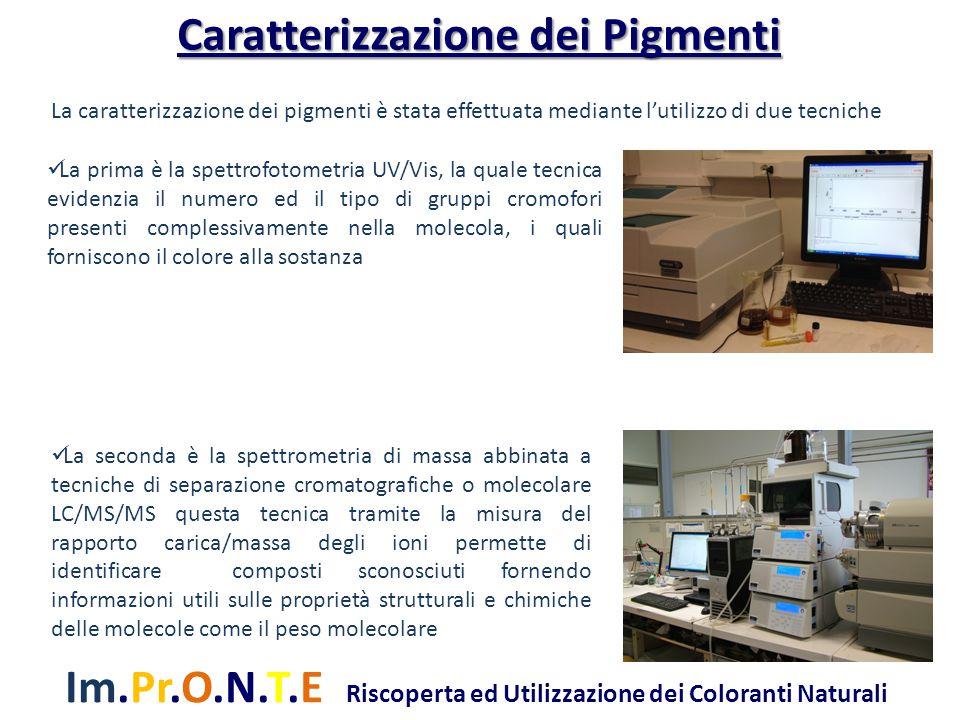 Im.Pr.O.N.T.E Riscoperta ed Utilizzazione dei Coloranti Naturali La caratterizzazione dei pigmenti è stata effettuata mediante l'utilizzo di due tecni