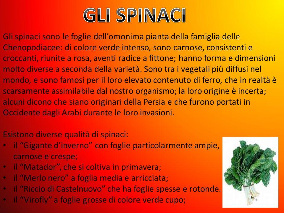 Gli spinaci sono le foglie dell'omonima pianta della famiglia delle Chenopodiacee: di colore verde intenso, sono carnose, consistenti e croccanti, riunite a rosa, aventi radice a fittone; hanno forma e dimensioni molto diverse a seconda della varietà.