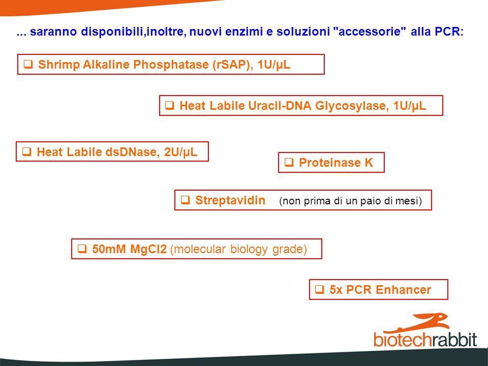  Shrimp Alkaline Phosphatase (rSAP), 1U/µL  Heat Labile Uracil-DNA Glycosylase, 1U/µL  Heat Labile dsDNase, 2U/µL  Proteinase K  Streptavidin (non prima di un paio di mesi)  50mM MgCl2 (molecular biology grade)  5x PCR Enhancer