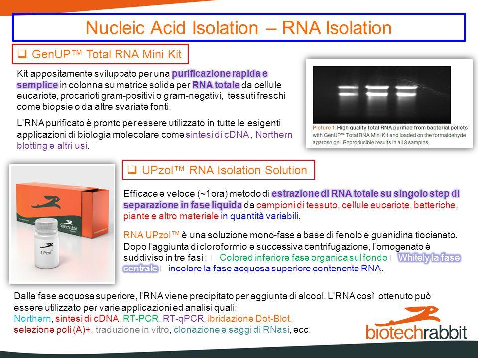 Nucleic Acid Isolation - DNA Isolation  GenUP™ gDNA Mini Kit tessuti di mammiferi (compresi quelli inclusi in paraffina).