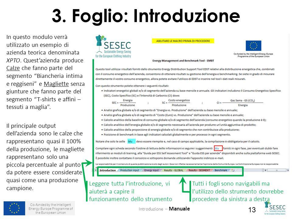Co-funded by the Intelligent Energy Europe Programme of the European Union 13 3. Foglio: Introduzione Tutti i fogli sono navigabili ma l'utilizzo dell