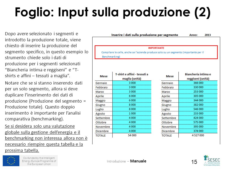 Co-funded by the Intelligent Energy Europe Programme of the European Union 15 Foglio: Input sulla produzione (2) Introduzione – Manuale Dopo avere sel