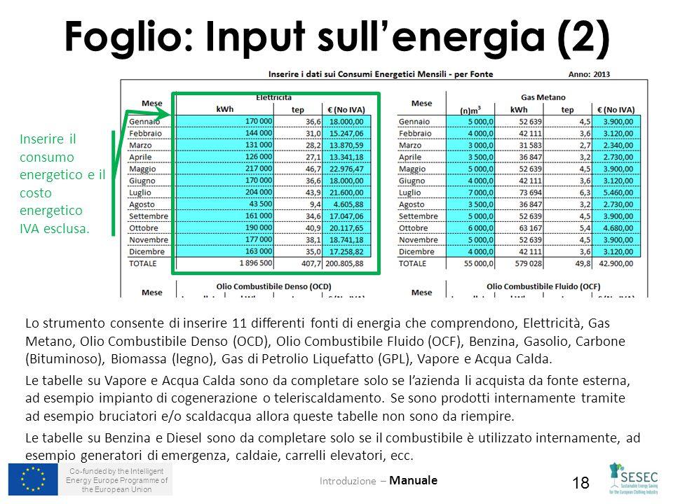 Co-funded by the Intelligent Energy Europe Programme of the European Union 18 Foglio: Input sull'energia (2) Introduzione – Manuale Inserire il consumo energetico e il costo energetico IVA esclusa.