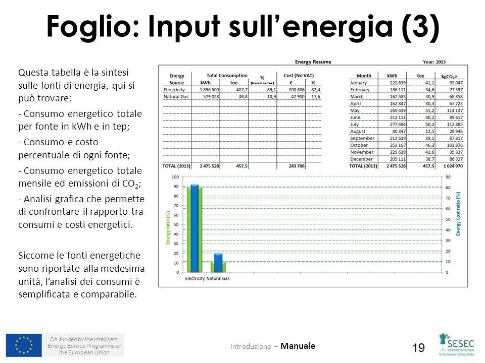 Co-funded by the Intelligent Energy Europe Programme of the European Union 19 Foglio: Input sull'energia (3) Introduzione – Manuale Questa tabella è la sintesi sulle fonti di energia, qui si può trovare: - Consumo energetico totale per fonte in kWh e in tep; - Consumo e costo percentuale di ogni fonte; - Consumo energetico totale mensile ed emissioni di CO 2 ; - Analisi grafica che permette di confrontare il rapporto tra consumi e costi energetici.