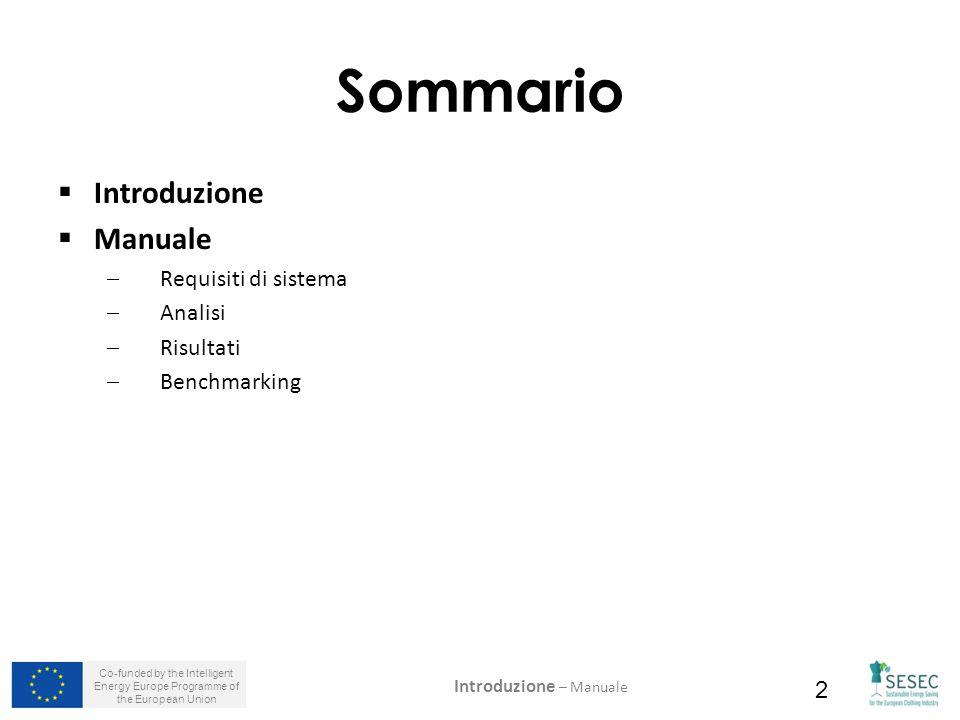 2 Sommario  Introduzione  Manuale  Requisiti di sistema  Analisi  Risultati  Benchmarking Introduzione – Manuale
