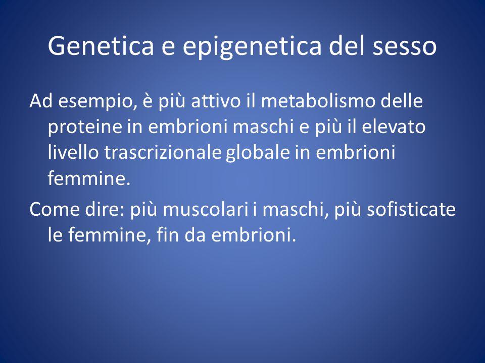 Genetica e epigenetica del sesso Ad esempio, è più attivo il metabolismo delle proteine in embrioni maschi e più il elevato livello trascrizionale globale in embrioni femmine.