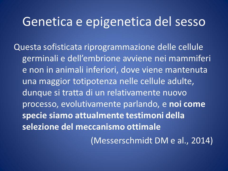 Genetica e epigenetica del sesso Questa sofisticata riprogrammazione delle cellule germinali e dell'embrione avviene nei mammiferi e non in animali inferiori, dove viene mantenuta una maggior totipotenza nelle cellule adulte, dunque si tratta di un relativamente nuovo processo, evolutivamente parlando, e noi come specie siamo attualmente testimoni della selezione del meccanismo ottimale (Messerschmidt DM e al., 2014)