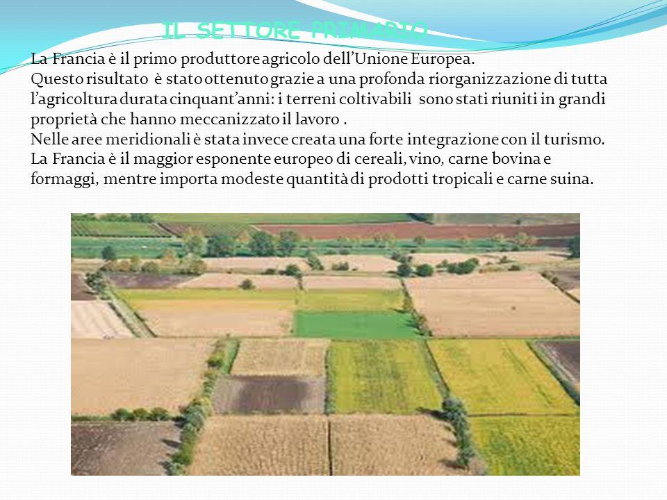 IL SETTORE PRIMARIO La Francia è il primo produttore agricolo dell'Unione Europea. Questo risultato è stato ottenuto grazie a una profonda riorganizza