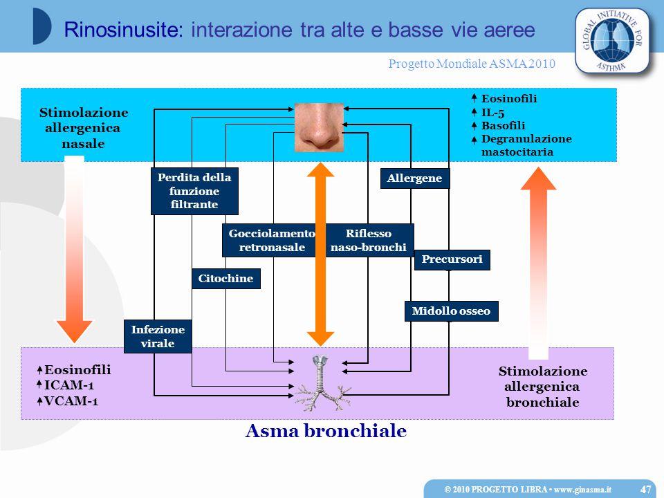 Progetto Mondiale ASMA 2010 Asma bronchiale Stimolazione allergenica bronchiale Eosinofili IL-5 Basofili Degranulazione mastocitaria Eosinofili ICAM-1