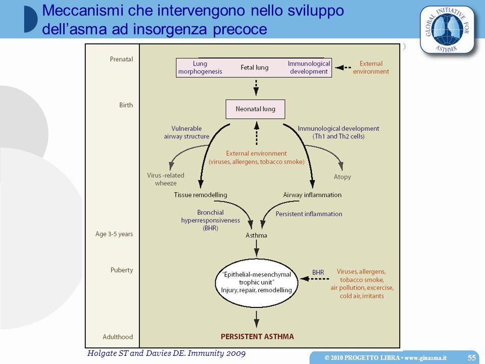 Progetto Mondiale ASMA 2010 © 2010 PROGETTO LIBRA www.ginasma.it 55 Meccanismi che intervengono nello sviluppo dell'asma ad insorgenza precoce Holgate