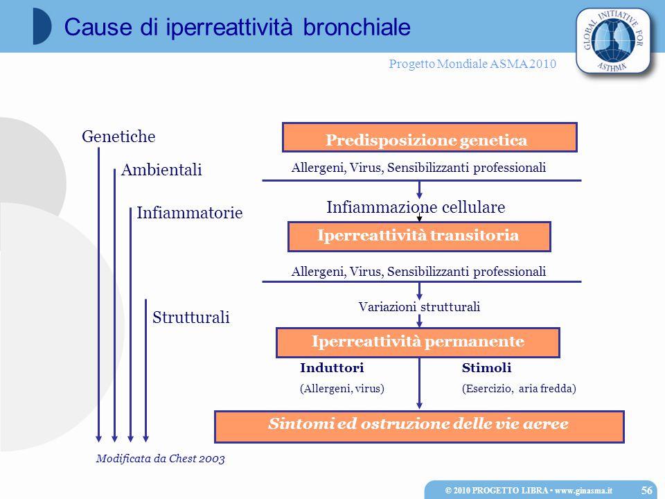 Progetto Mondiale ASMA 2010 Sintomi ed ostruzione delle vie aeree Genetiche Ambientali Infiammatorie Strutturali Predisposizione genetica Allergeni, V