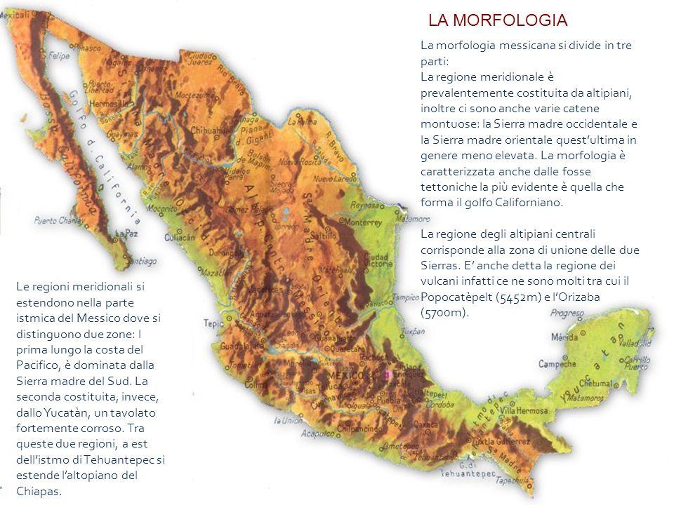 LA MORFOLOGIA La morfologia messicana si divide in tre parti: La regione meridionale è prevalentemente costituita da altipiani, inoltre ci sono anche varie catene montuose: la Sierra madre occidentale e la Sierra madre orientale quest'ultima in genere meno elevata.
