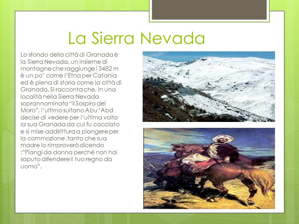 La Sierra Nevada Lo sfondo della città di Granada è la Sierra Nevada, un insieme di montagne che raggiunge i 3482 m è un po' come l'Etna per Catania e