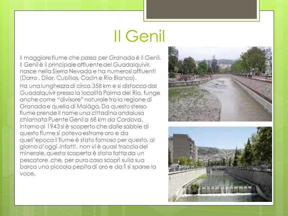 Il Genil Il maggiore fiume che passa per Granada è il Genil. Il Genil è il principale affluente del Guadalquivir, nasce nella Sierra Nevada e ha numer