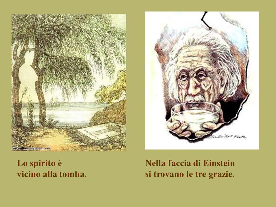 Lo spirito è vicino alla tomba. Nella faccia di Einstein si trovano le tre grazie.