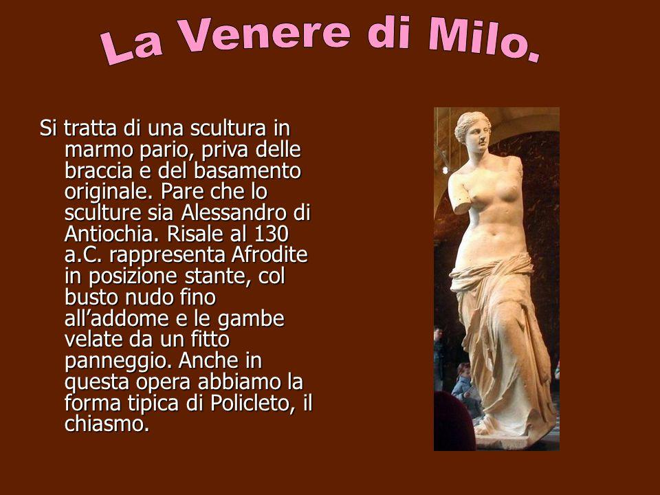 Si tratta di una scultura in marmo pario, priva delle braccia e del basamento originale. Pare che lo sculture sia Alessandro di Antiochia. Risale al 1