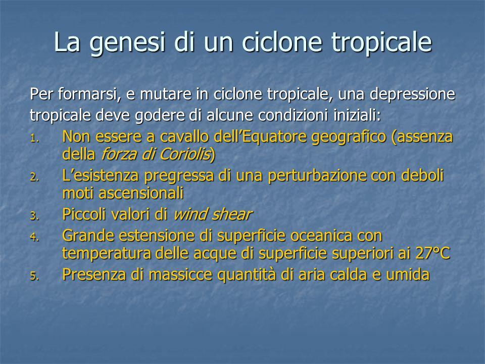 La genesi di un ciclone tropicale A seguito della risalita d'aria si crea una zona di bassa pressione, che richiama masse d'aria dalle zone circostanti A seguito della risalita d'aria si crea una zona di bassa pressione, che richiama masse d'aria dalle zone circostanti Le masse d'aria, provenienti da zone anche molto distanti, risentono dell'effetto di Coriolis Le masse d'aria, provenienti da zone anche molto distanti, risentono dell'effetto di Coriolis Si genera in questo modo il caratteristico moto rotatorio antiorario (orario) Si genera in questo modo il caratteristico moto rotatorio antiorario (orario) A partire da questo istante le uniche forze agenti sono la forza di gradiente e la forza centrifuga (equilibrio ciclostrofico) A partire da questo istante le uniche forze agenti sono la forza di gradiente e la forza centrifuga (equilibrio ciclostrofico)