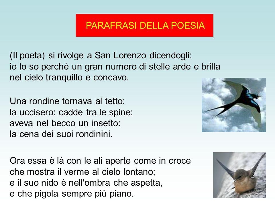 PARAFRASI DELLA POESIA (Il poeta) si rivolge a San Lorenzo dicendogli: io lo so perchè un gran numero di stelle arde e brilla nel cielo tranquillo e concavo.