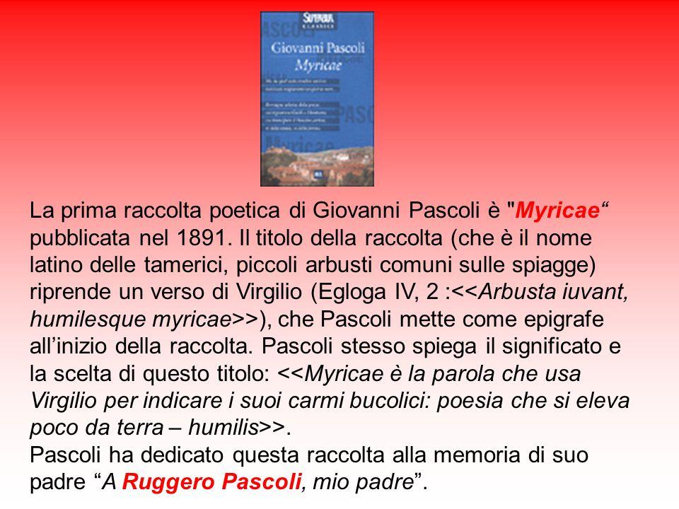 X Agosto La poesia, la numero 80 di Myricae, fu scritta nel 1896 e pubblicata nella IV edizione di Myricae del 1897.
