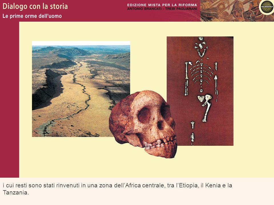 i cui resti sono stati rinvenuti in una zona dell'Africa centrale, tra l'Etiopia, il Kenia e la Tanzania.