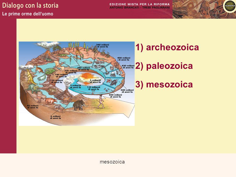 cenozoica 1) archeozoica 2) paleozoica 3) mesozoica 4) cenozoica
