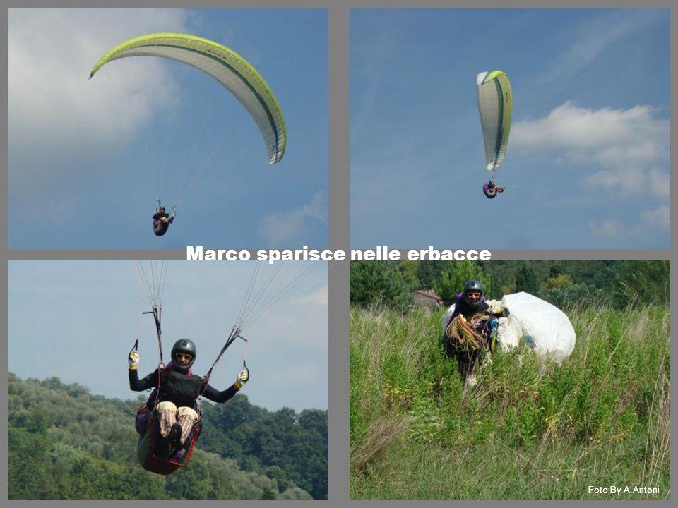 Marco sparisce nelle erbacce