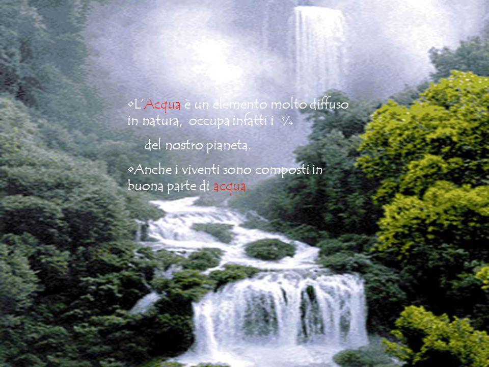 L'Acqua è un elemento molto diffuso in natura, occupa infatti i ¾ del nostro pianeta. Anche i viventi sono composti in buona parte di acqua.