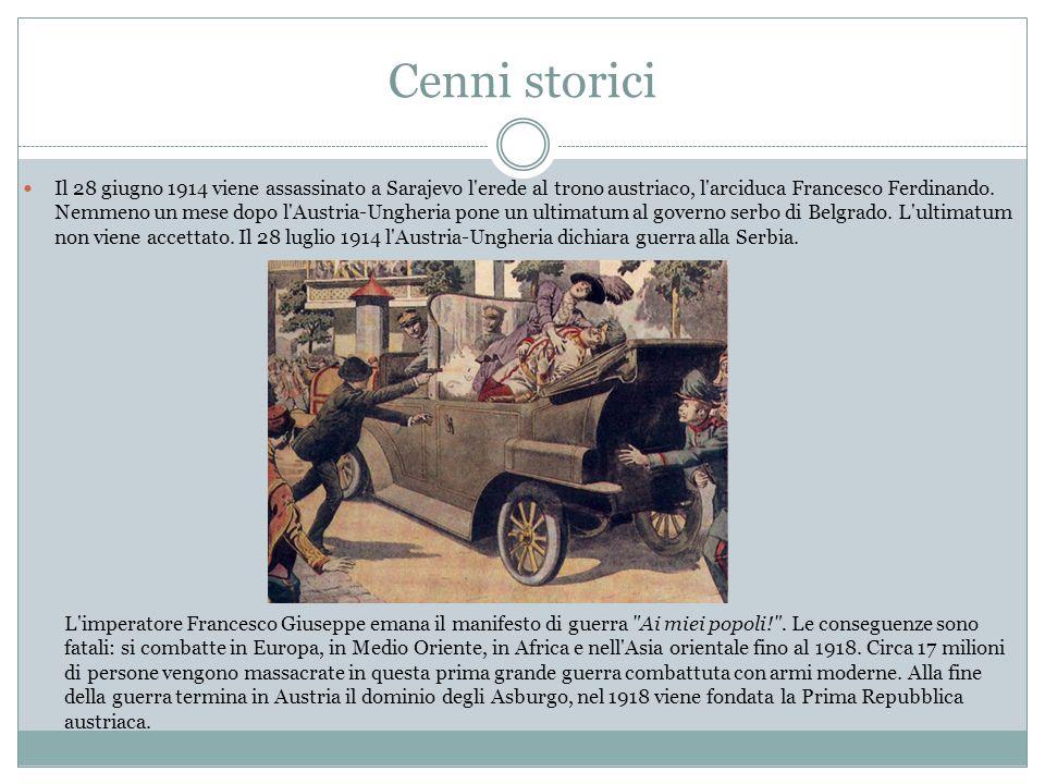 L'Italia dichiara la guerra all'Austria L Italia presenta la dichiarazione di guerra all Austria- Ungheria per mezzo del suo ambasciatore a Vienna, Giuseppe Avarna.