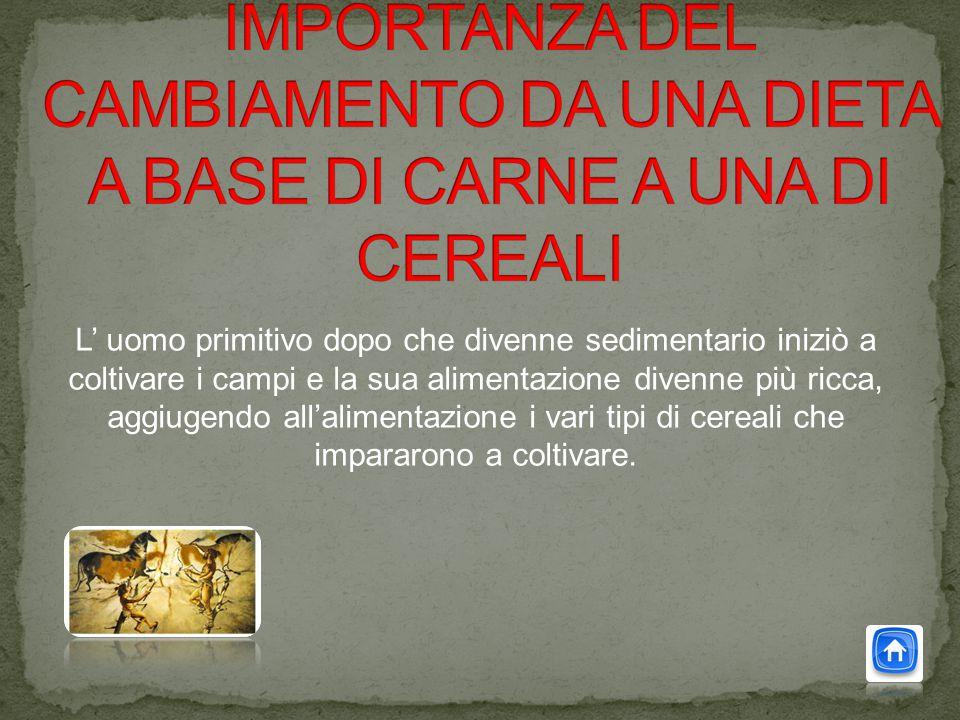 L' uomo primitivo dopo che divenne sedimentario iniziò a coltivare i campi e la sua alimentazione divenne più ricca, aggiugendo all'alimentazione i vari tipi di cereali che impararono a coltivare.