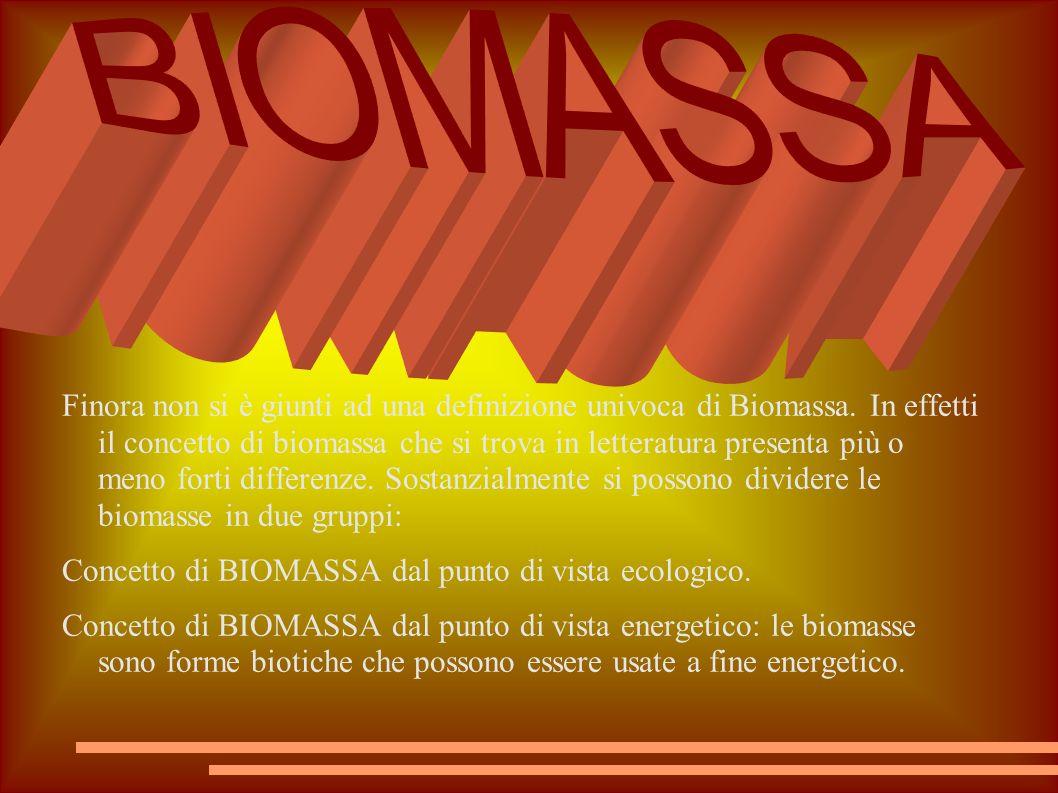 Finora non si è giunti ad una definizione univoca di Biomassa. In effetti il concetto di biomassa che si trova in letteratura presenta più o meno fort