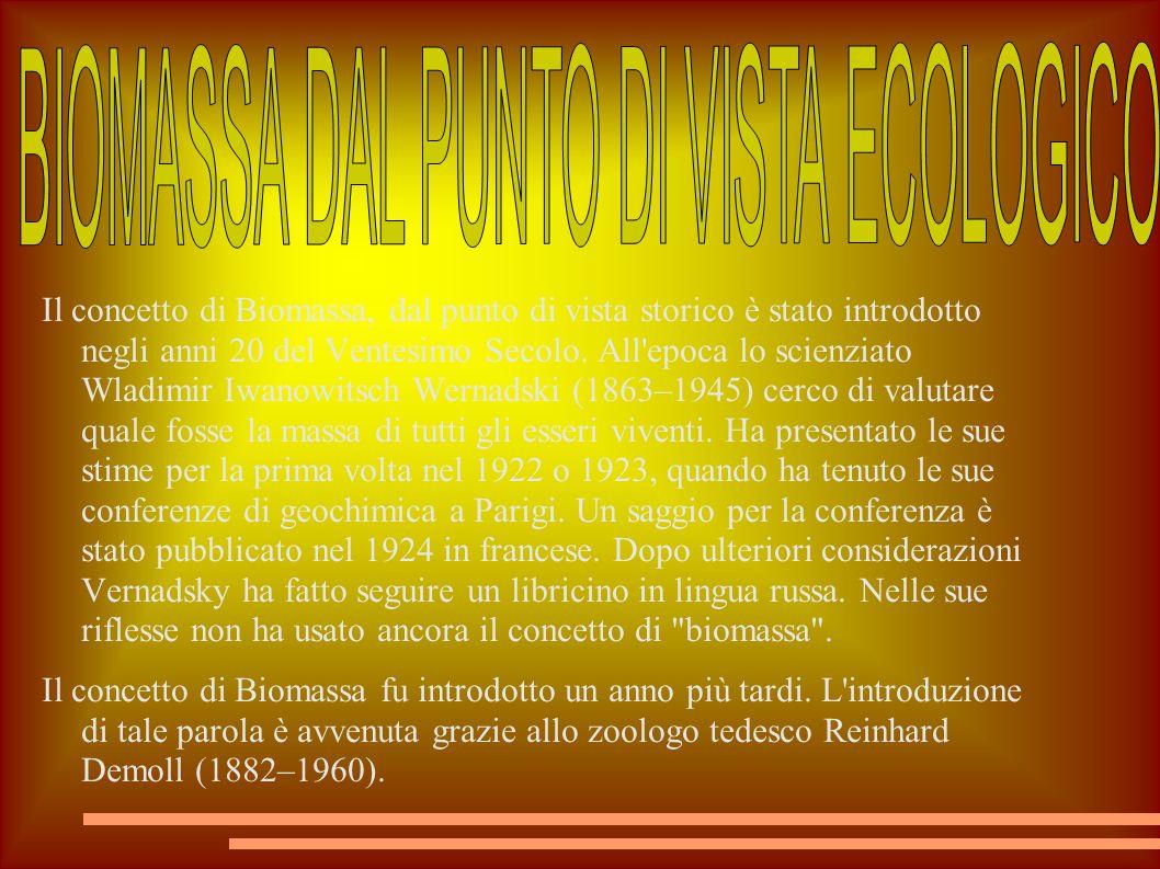Il concetto di Biomassa, dal punto di vista storico è stato introdotto negli anni 20 del Ventesimo Secolo. All'epoca lo scienziato Wladimir Iwanowitsc