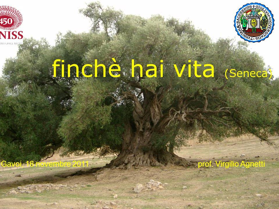 Devi imparare a vivere finchè hai vita (Seneca) Gavoi, 16 novembre 2011 prof. Virgilio Agnetti